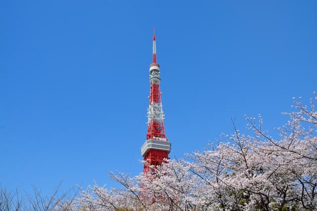 東京タワー(PIXTA)