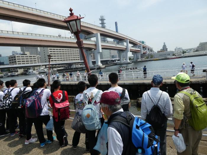 阪神淡路大震災によって被災したメリケン波止場の岸壁60mを保存した神戸港震災メモリアルパーク。生まれる前に起きた大震災とその後の復興を目の当たりにする高校生たち