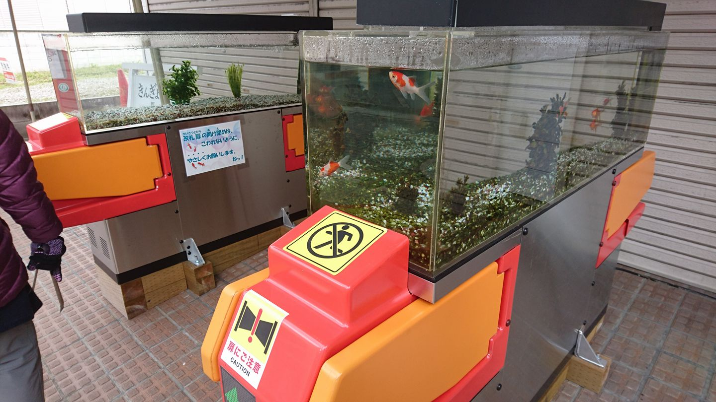 2-2.金魚の水槽