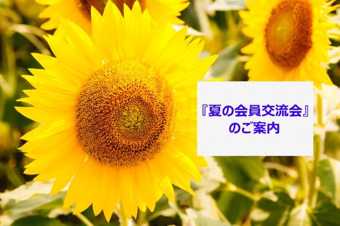 ELFA0704IMG_7132_TP_V